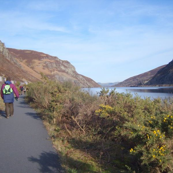 walking on the cycle track  at Caban-coch Reservoir